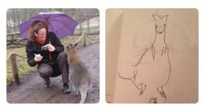 Känguru zeichnen