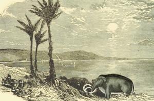 Testfilm mit Pterodactylussen - Filmstill