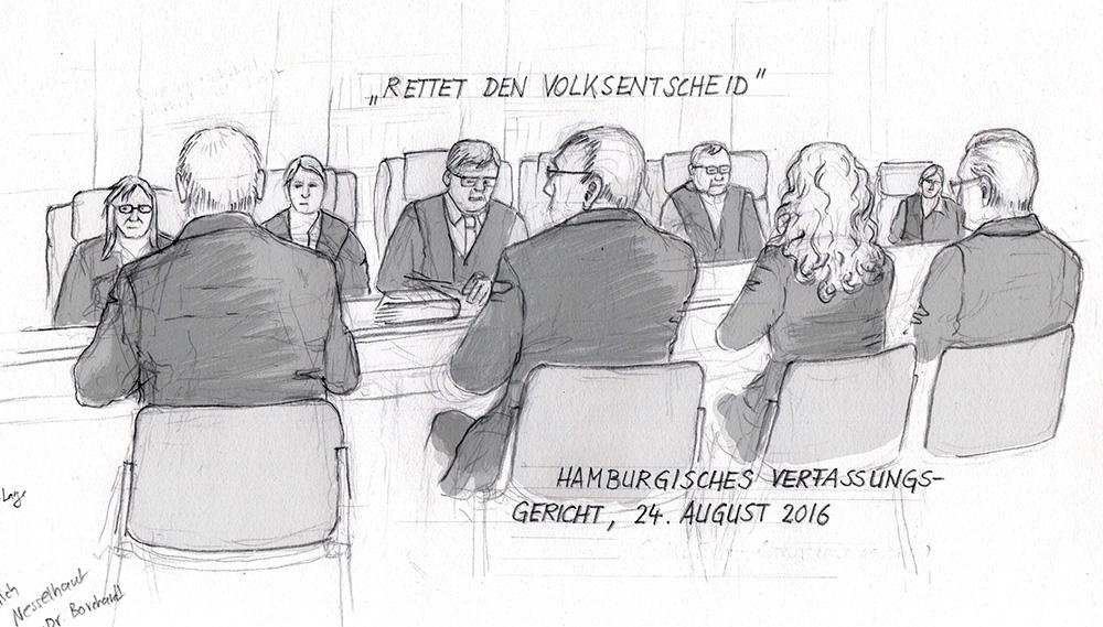 """""""Rettet den Volksentscheid"""", Mündliche Verhandlung vor dem Hamburger Verfassgericht am  24.08.2016, (C) Christine Klein"""